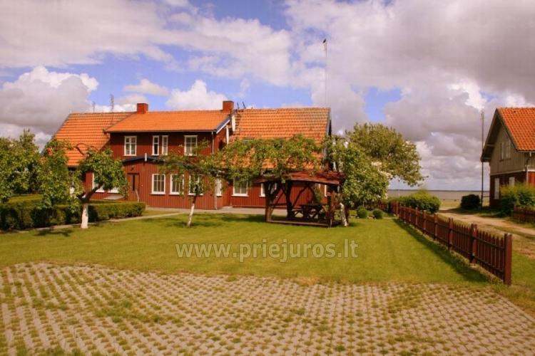 Pokoje i apartamenty z widokiem na lagunę do wynajęcia w Mierzei Kurońskiej - 6