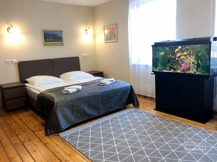 Viktorija - przestronne dwuosobowe apartamenty w Nidzie (w domku lub z osobnym wejściem) - 10