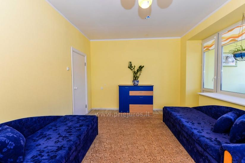 Przestronne dwa pokoje mieszkanie z balkonem w centrum Nidy - 7