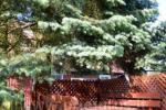 Domek z kominkiem, mieszkania do wynajęcia w Nidzie - 11