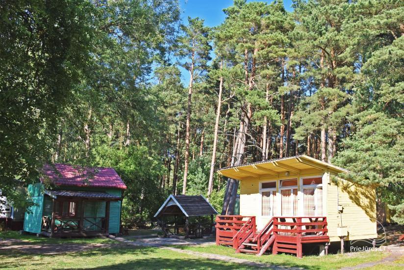 Domki do wynajecia nad morzem w Litwe - 5