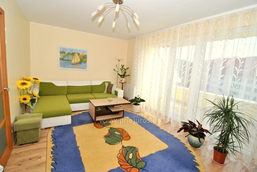 Dwa pokoje mieszkanie w centrum Nidy z dużym balkonem, 2 telewizory - 1