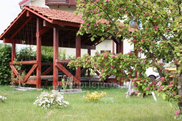 Dom Goscinny w Sventoji Osia - Pokoje, apartamenty 150 m wydmy! - 6