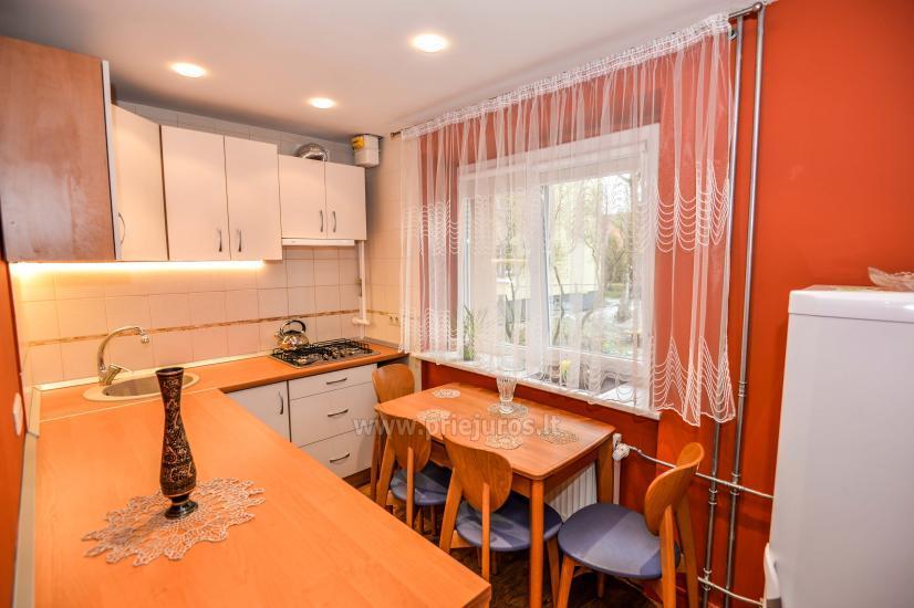 Przytulne dwupokojowe mieszkanie w centrum Połągi - 9