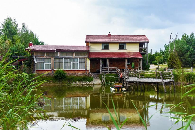 Wille, sauna, hala wynajem 10 km od Kłajpedy, w pobliżu minizoo, Jonušas - 6