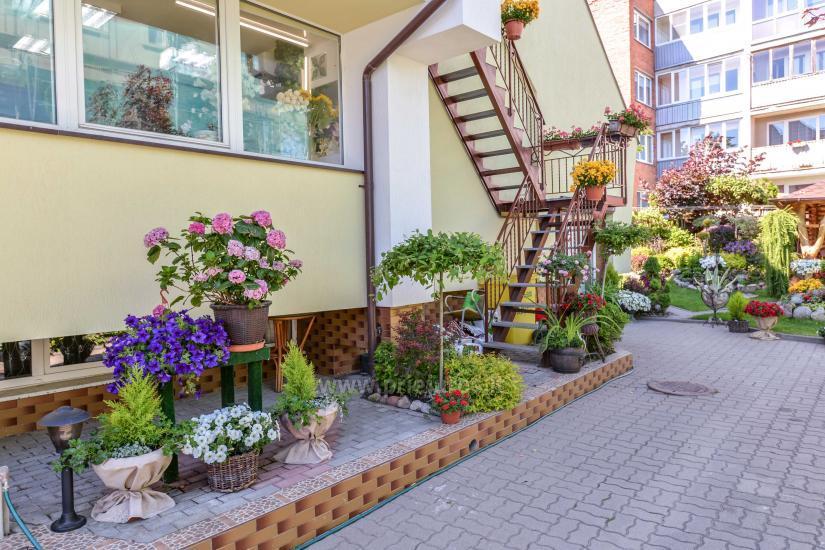 Apartamenty i pokoje do wynajęcia w Połądze, centrum miasta - 8