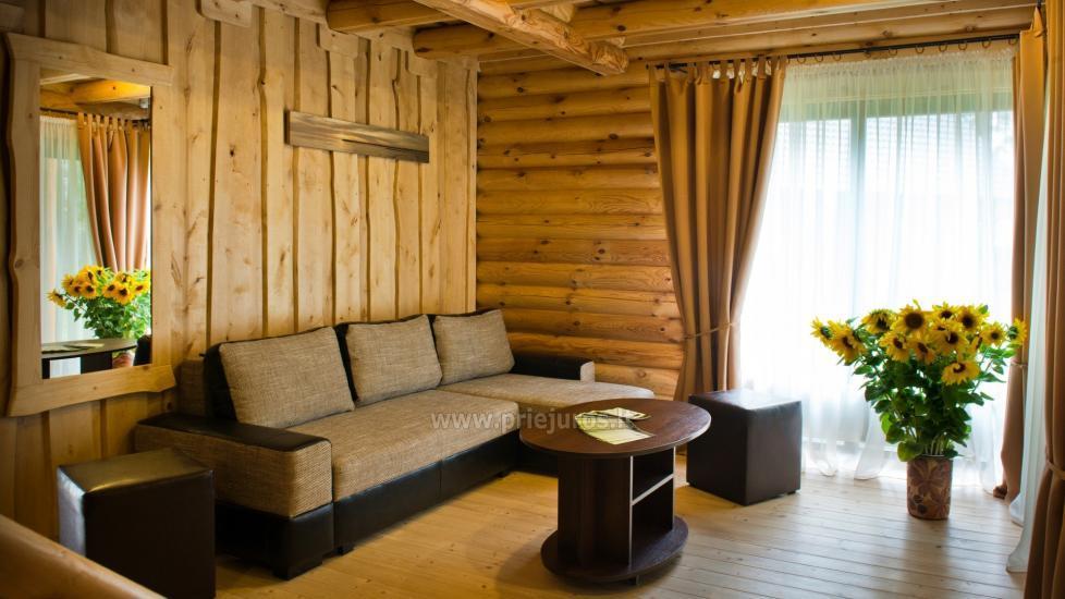 Wille drewniane do wynajęcia w Połądze - Atostogu parkas - 9
