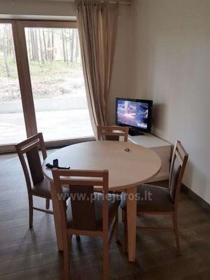 Jeden pokój apartament z niesamowitym widokiem na las sosnowy w Nidzie, Mierzeja Kurońska, Litwa - 5