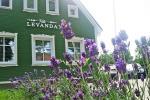 Villa Levanda - Polaga pokoje na wynajem - 2