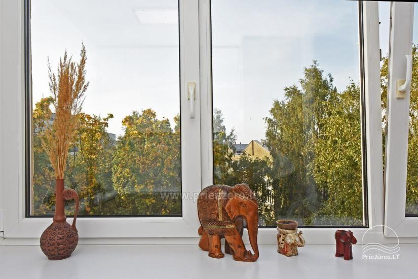 Sand apartment - Krótkoterminowy wynajem mieszkania w Kłajpedzie na Litwie - 3