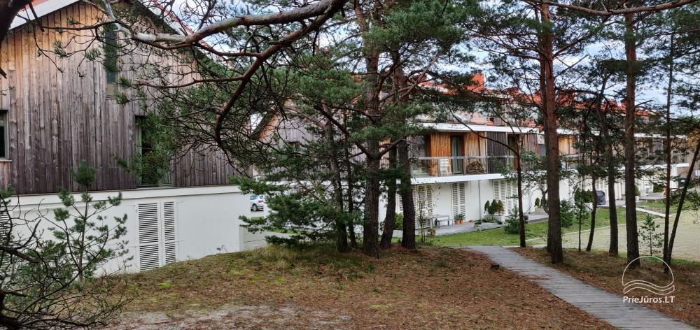 Apartament do wynajęcia na Mierzei Kurońskiej, w pobliżu Morza Bałtyckiego - 11