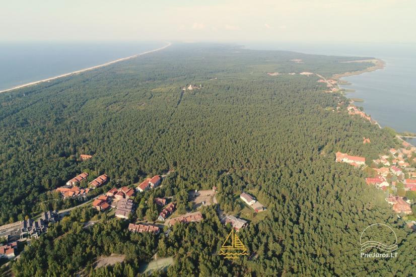 Apartament w Nidzie, 7 km od morza, z tarasem w sosnowym lesie - 18