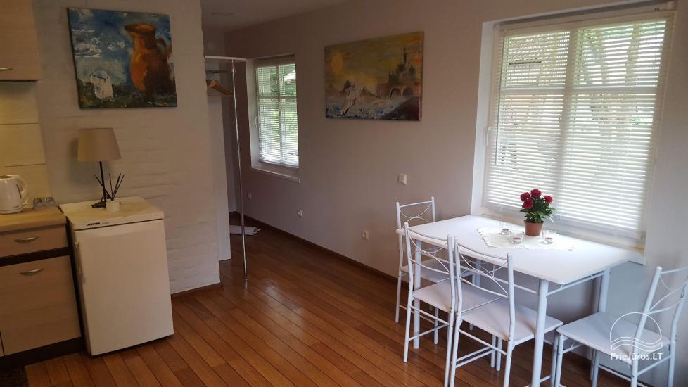 Niedawno odnowiony apartament z tarasem w Juokrante, Mierzeja Kurońska, Litwa - 6
