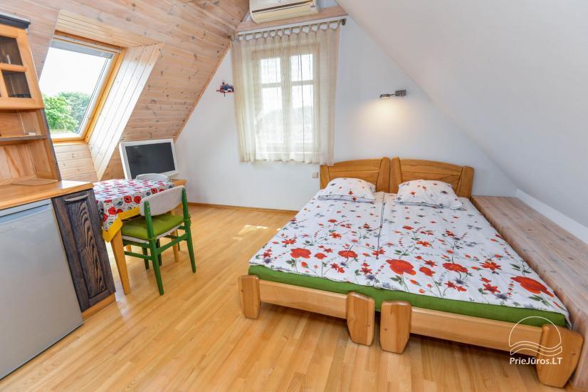 Trzypokojowy apartament z podwórkiem, altaną - do wynajęcia w Nidzie, Mierzeja Kurońska - 18
