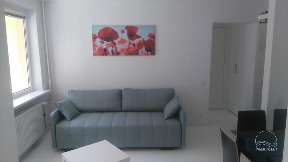 Studio White - 2 pokoje do wynajęcia w Połądze - 3