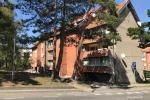 Wynajem mieszkań Nida centre i  Nida Forest - 1