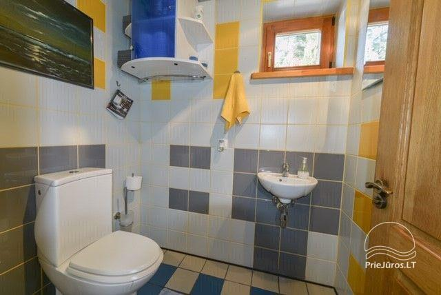 AMBER DREAM - mieszkanie na 3 piętrach z altaną na podwórku - 9