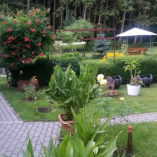 Agroturystyka w Vente Šturmų sodyba - 1