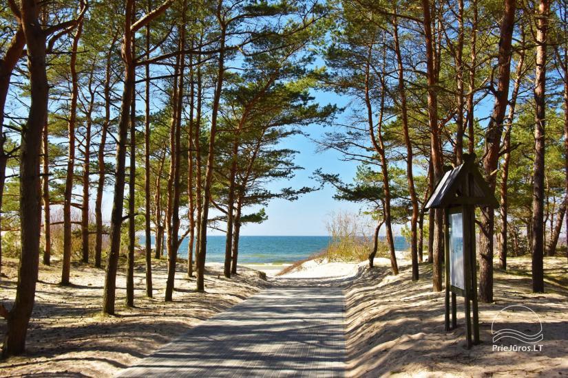 Žalia kopa near the beach - 21