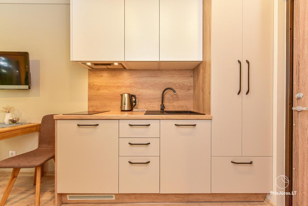 Apartament typu studio do wynajęcia w Juodkrante, w Mierzei Kurońskiej w pobliżu Morza Bałtyckiego - 4