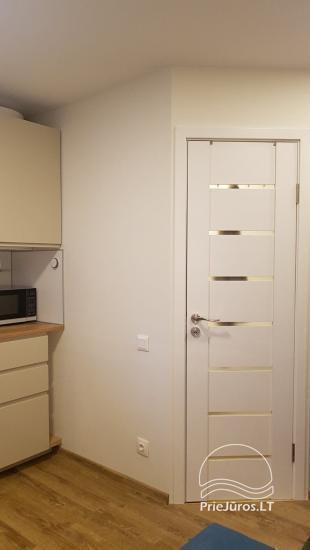 Apartament typu studio do wynajęcia w centrum Juodkrante, w pobliżu Zalewu Kurońskiego - 13