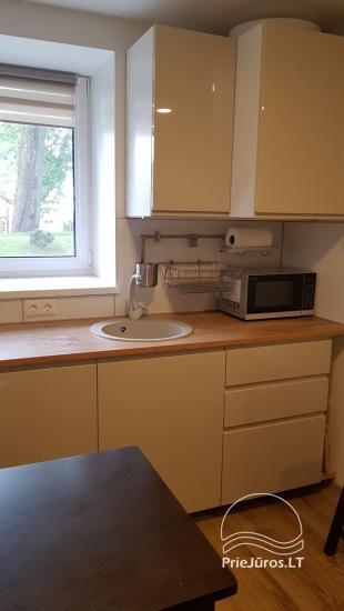 Apartament typu studio do wynajęcia w centrum Juodkrante, w pobliżu Zalewu Kurońskiego - 9