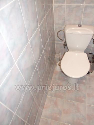 1 i 2 pokoje mieszkanie w Juodkrante - 8