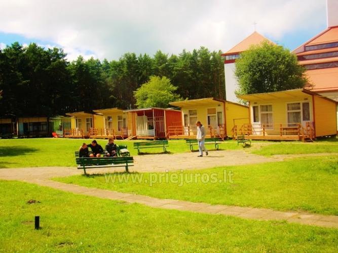 Domy drewniane w lesie sosnowym, w pobliżu kościoła w Sventoji - 5