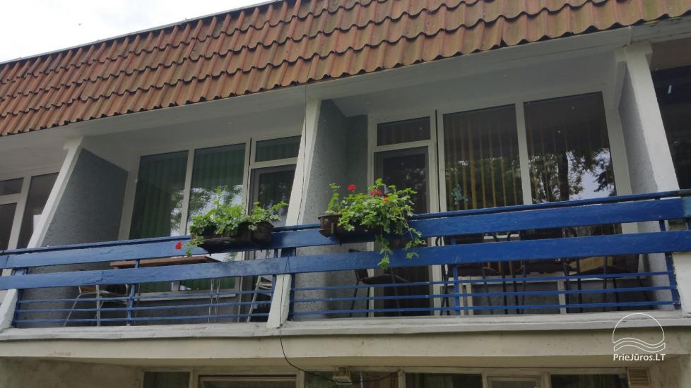 Mieszkanie jednopokojowe do wynajęcia w dwupokojowym mieszkaniu w Nidzie - 1