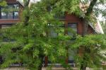 Mieszkanie jednopokojowe do wynajęcia w dwupokojowym mieszkaniu w Nidzie - 4