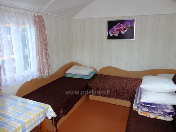Kemping, domy wakacyjne do wynajęcia w Kunigiskes - 1