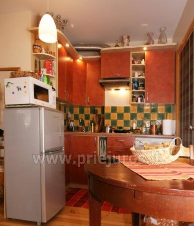 1 pokoje mieszkanie na wynajem w Nidzie - 7