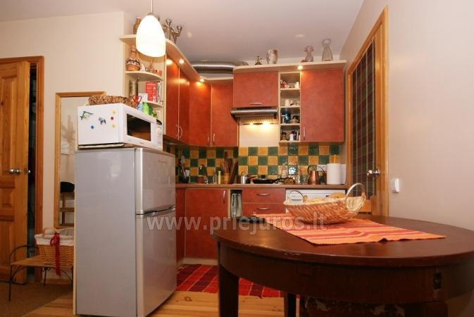 1 pokoje mieszkanie na wynajem w Nidzie - 8