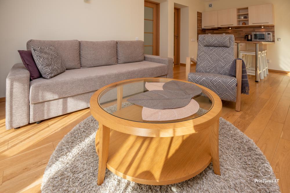 Nowoczesne dwa pokoje mieszkanie z dużym tarasem w Mierzei Kurońskiej, Juodkrante - 10