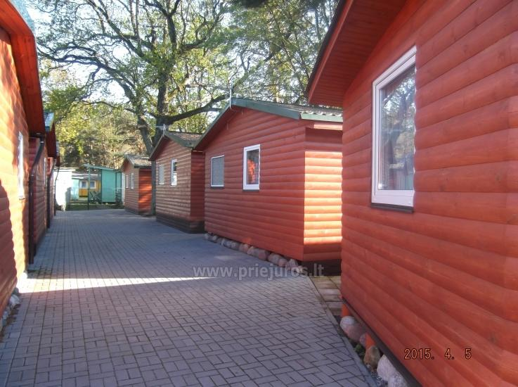 Nowe domki Elnias bardzo blisko morza w Sventoji - 10