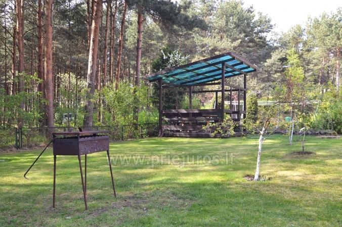 Ekologiczne 1-pokojowe mieszkanie w Nidzie - 2