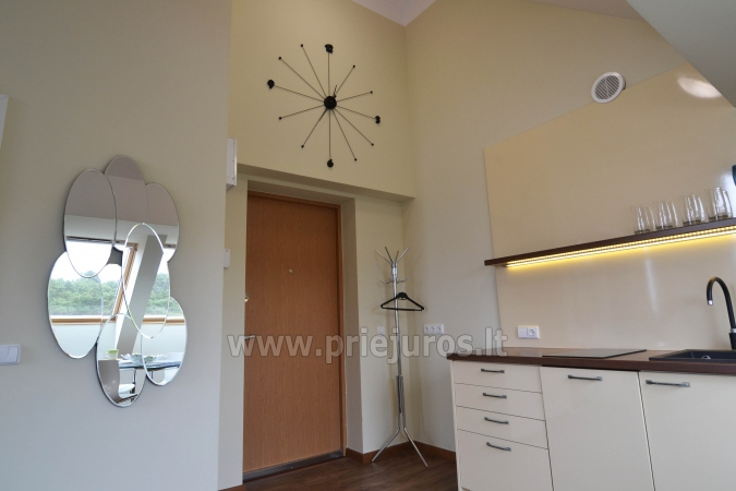 Dobrze wyposażone dwa pokoje apartamenty z widokiem na lagunę w Nidzie - 6