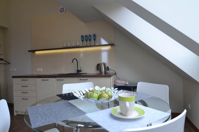 Dobrze wyposażone dwa pokoje apartamenty z widokiem na lagunę w Nidzie - 7