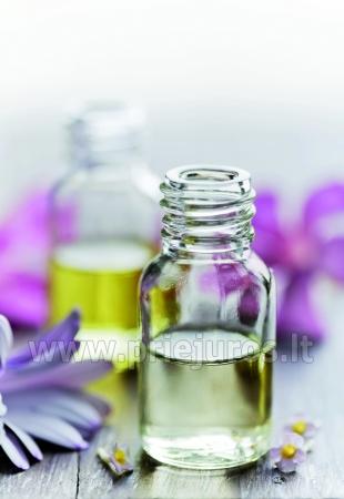 Zapachy Prowansji SPA - 4