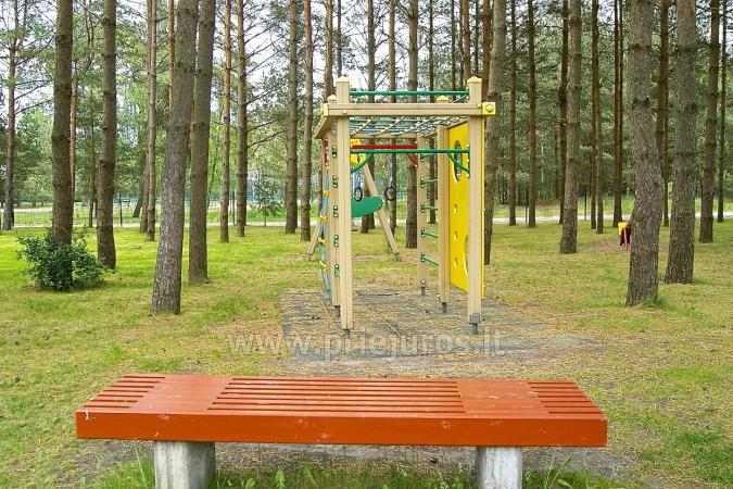 Wypoczynek tylko 80 metrów od morza, w lesie sosnowym - 7