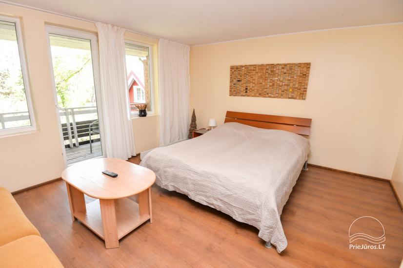 Apartamenty w Neringa: taras / balkon z widokiem na lagunę, Wi-Fi - 7