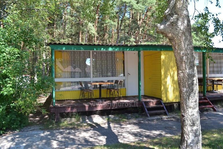 Tani wypoczynek w Sventoji, w drewnianych domach, w odległości 50 metrów od morza - 5