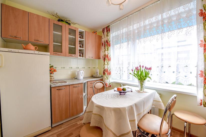 Mieszkanie do wynajęcia w centrum Nidy - 13