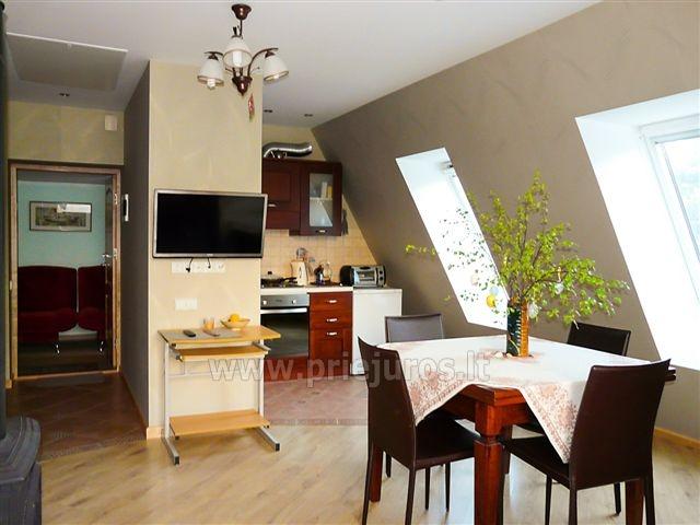 Dwupokojowy apartament z kominkiem Gniazdem II do wynajęcia w Nidzie - 2