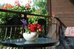 VILLA ARTEMIDE - Rodzinny hotel w Poladze - 6