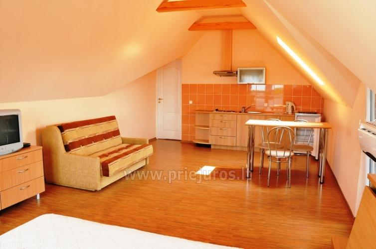 Przestronny apartament dwupokojowy. Spokojna lokalizacja, 10 min. na piechotę do plaży - 3