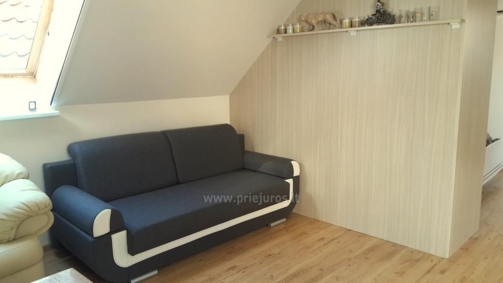 1-pokojowe mieszkania do wynajęcia w Juodkrante - 5