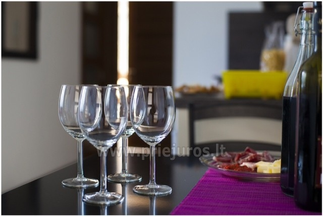 2-pokojowe i 2-pokojowe apartamenty-mieszkania do wynajęcia w centrum Połągi - 3
