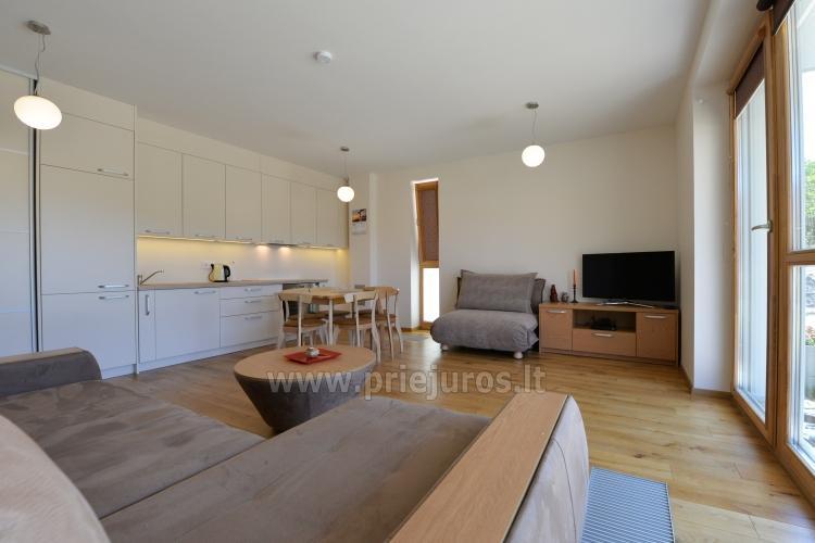 Dwa pokoje apartamenty w Nidzie, Mierzeja Kurońska z tarasem, huśtawki - 3