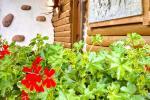 Dom wakacyjny do wynajęcia w Kunigiskiai